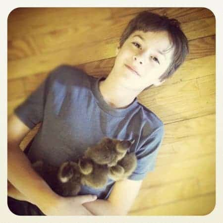 aidan and ducklings