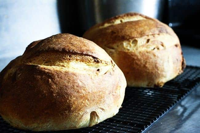 Roasted Garlic Rustic Sourdough Boule | www.foodiewithfamily.com