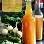Fire Cider: Savoury sweet infused vinegar that makes a fantastic dressing AND health tonic/homeopathic remedy.