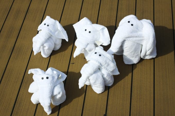 Towel Elephants on Parade: Cruising on the Carnival Sunshine foodiewithfamily.com