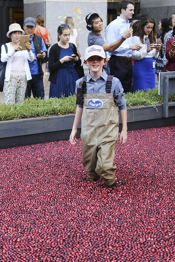 The Ocean Spray® Cranberry Classroom