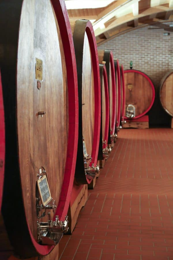 The wine barrels in the barrel room at DaVinci's Montalcino winemaking facility foodiewithfamily.com