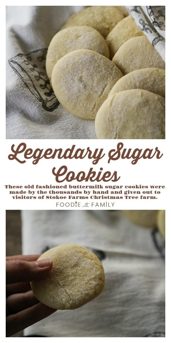 These beautiful Stokoe Farms' Legendary Sugar Cookies are soft, sweet, fluffy, old-fashioned, and delicate and shimmer with a coating of crunchy granulated sugar.
